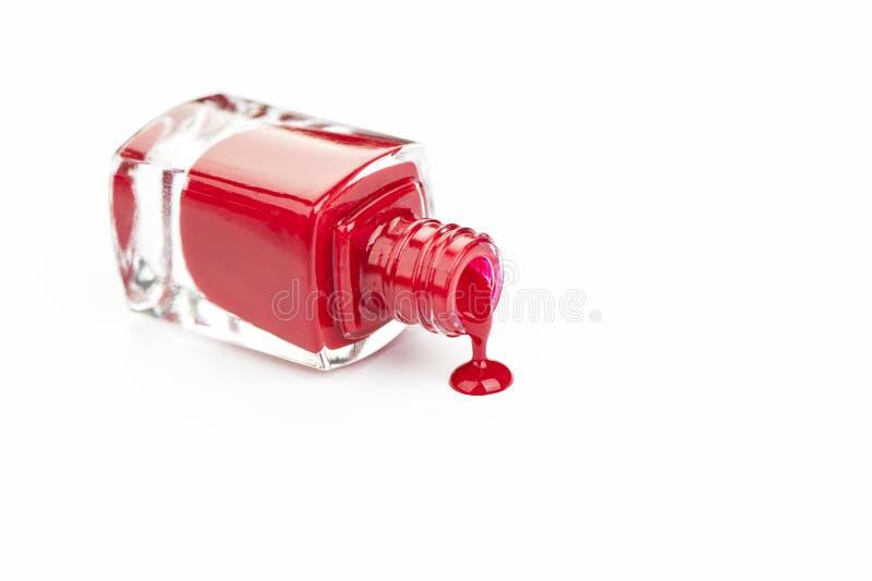 красный цвет маникюра стоковая фотография