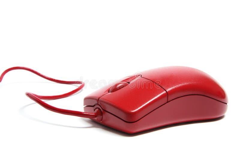 красный цвет мыши компьютера стоковые изображения rf