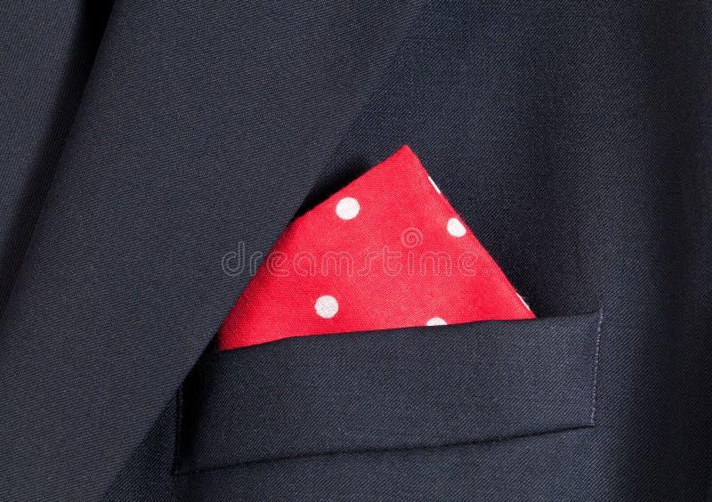 красный цвет носового платка блейзера голубой стоковое изображение