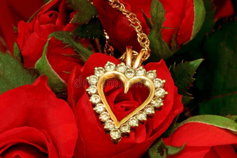 красный цвет ожерелья поднял стоковые изображения