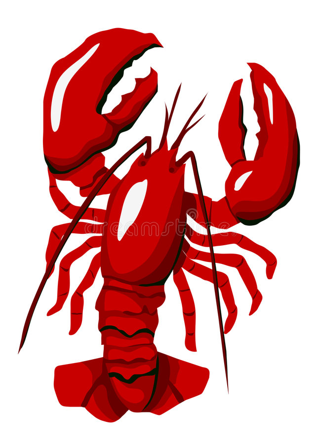 красный цвет омара иллюстрация вектора