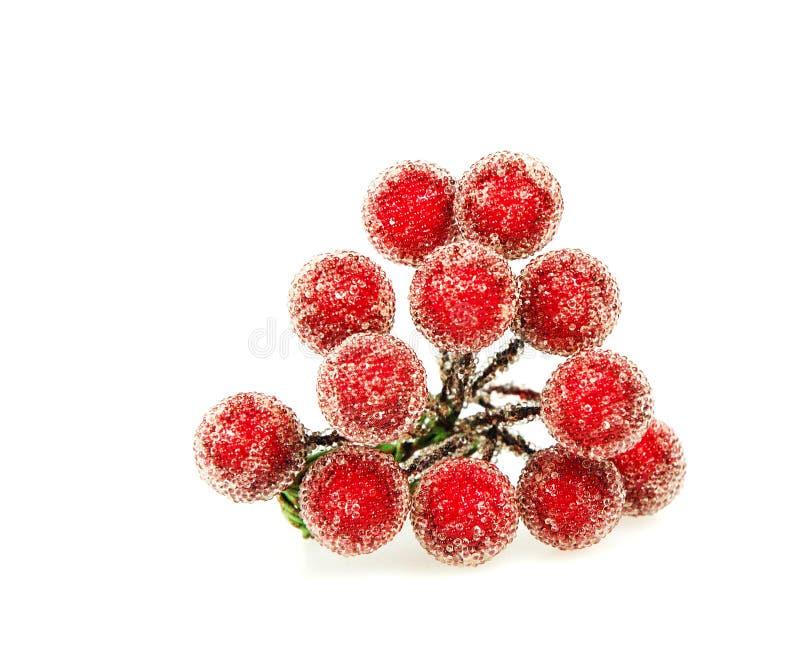красный цвет падуба ягод стоковое фото rf