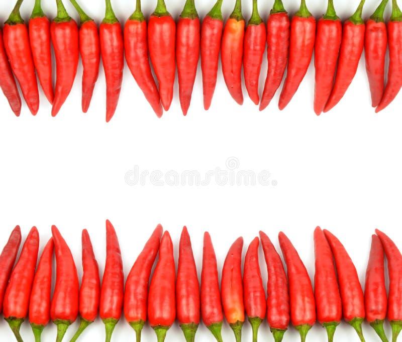 красный цвет рамки chili стоковое изображение