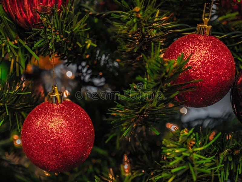 красный цвет рождества стоковые фото