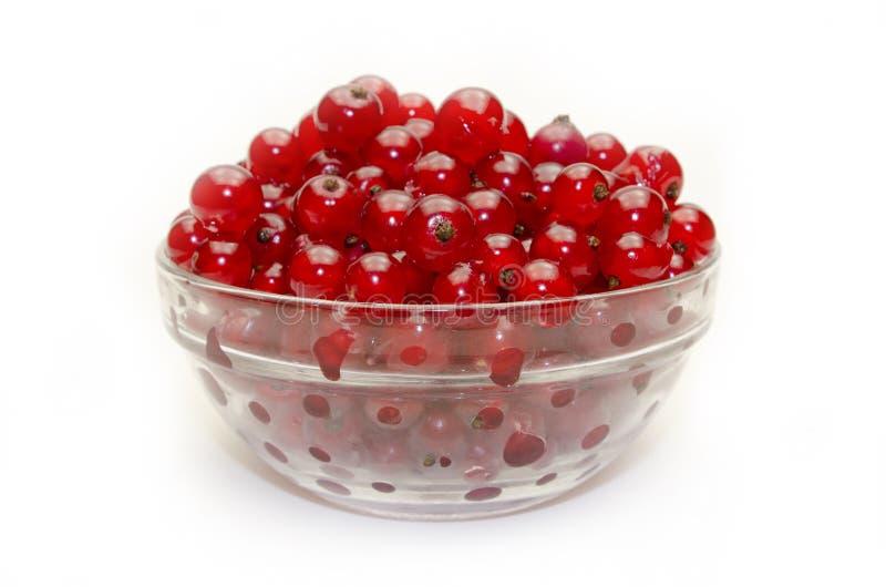 красный цвет смородины шара стеклянный стоковые фотографии rf