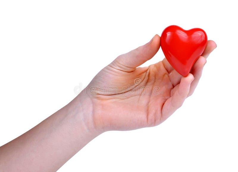 красный цвет удерживания сердца руки стоковое фото rf
