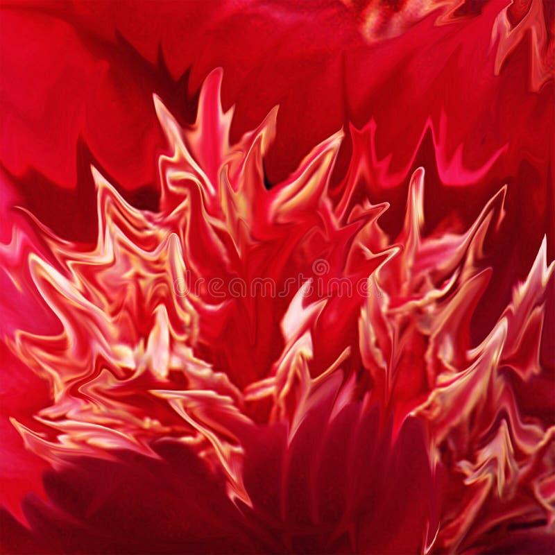 красный цвет цветка пожара стоковые изображения