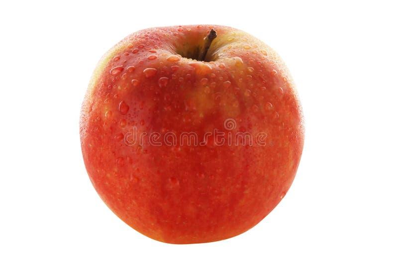 красный цвет яблока свежий стоковое фото