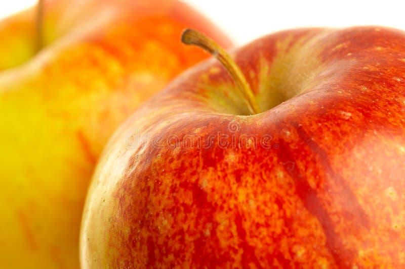 красный цвет яблока свежий стоковые фото