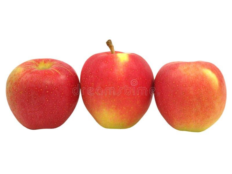 красный цвет 3 яблока стоковое фото rf