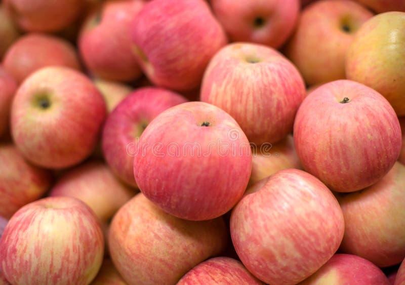 красный цвет fuji яблока стоковые фото