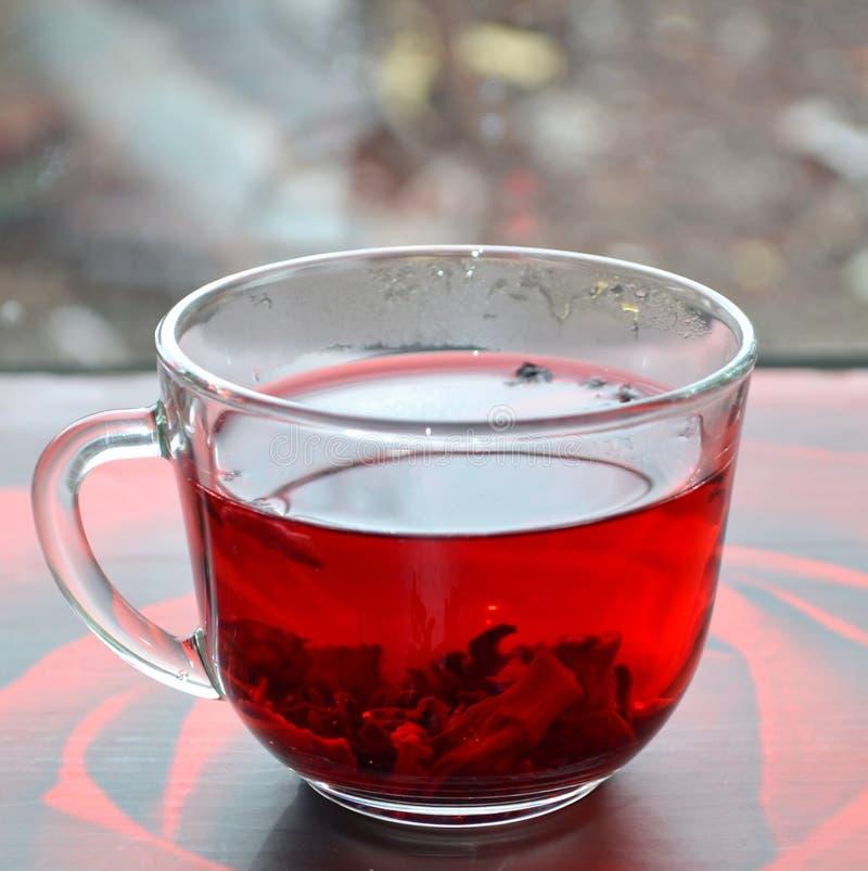 Красный чай гибискуса стоковое изображение rf