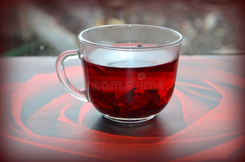 Красный чай гибискуса стоковые фотографии rf