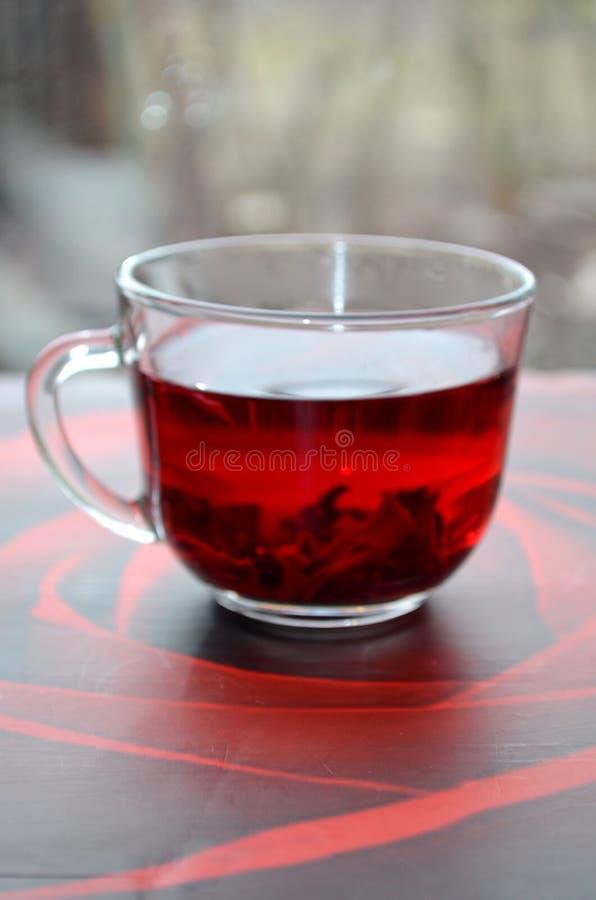 Красный чай гибискуса стоковое изображение
