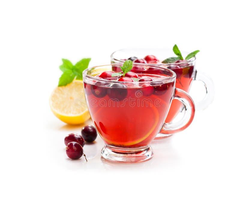 Красный чай плодоовощ при лимон и клюква изолированные на белом backgr стоковое изображение rf