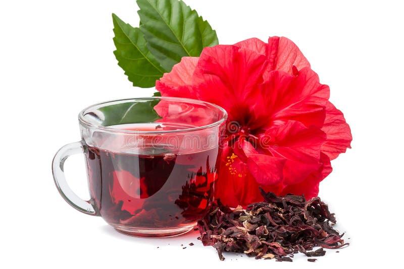 Красный чай цветка и гибискуса горячий стоковая фотография