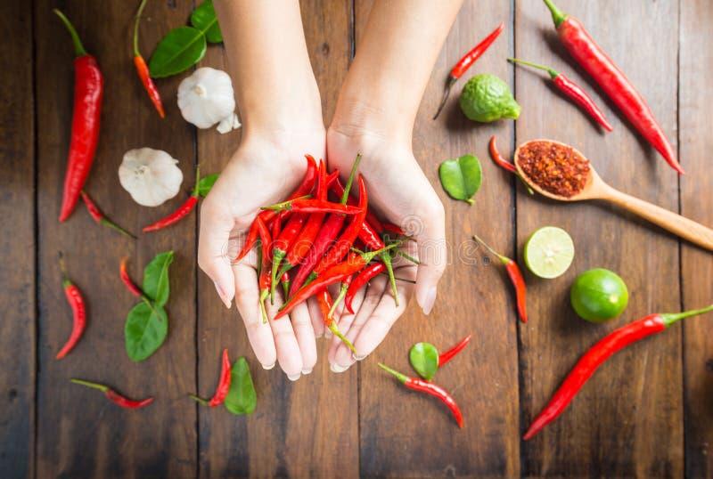 Красный chili в руках на предпосылке древесины стоковая фотография rf