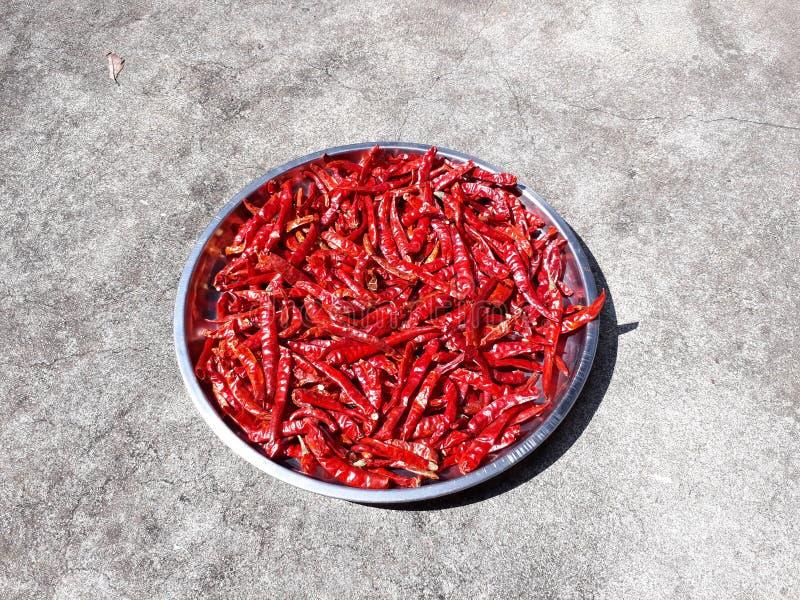 Красный Chili на конкретной предпосылке стоковая фотография