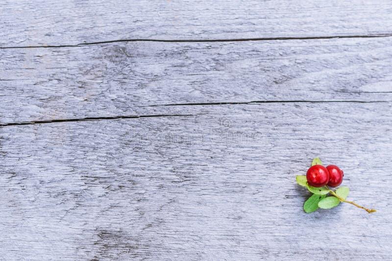 Красный cowberry с листьями на предпосылке деревянных доск стоковое фото