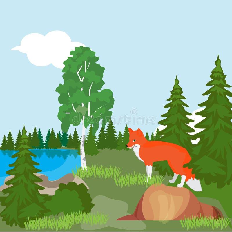 Красный Fox в северных древесинах, в расчистке леса около пруда бесплатная иллюстрация