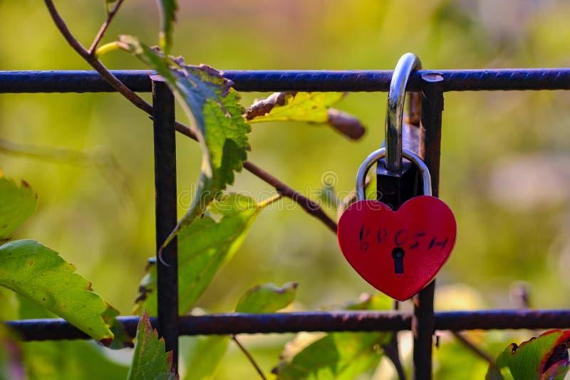 Красный padlock свадьбы формы сердца на зеленом цвете стоковые изображения rf