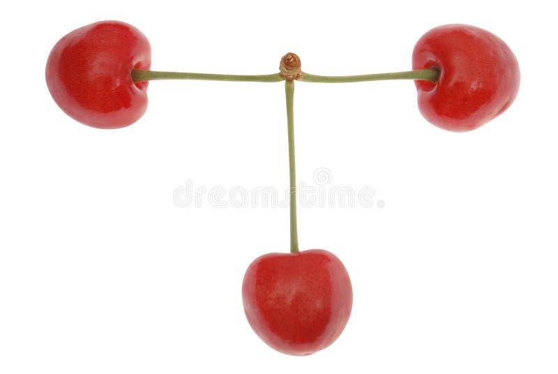 3 красных вишни стоковые фотографии rf