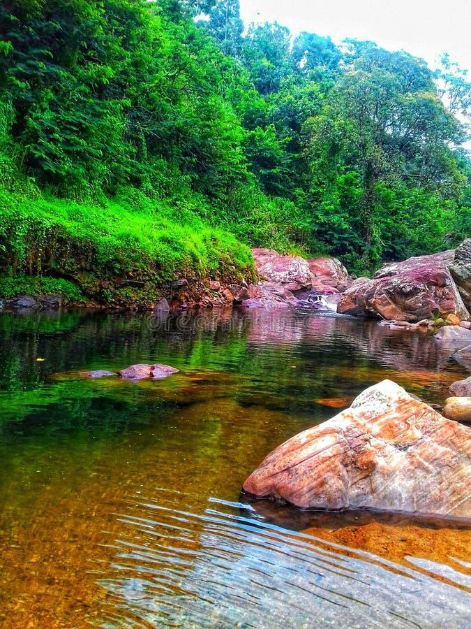 Красота воды стоковое изображение rf