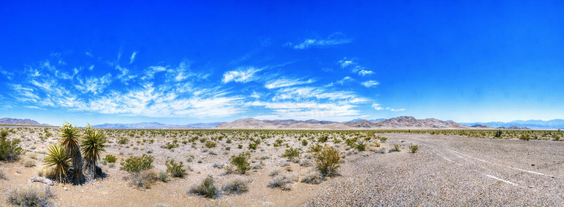 Красота пустыни Невады стоковое изображение