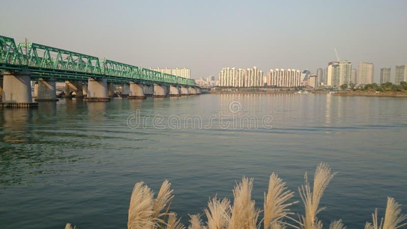 Красота Сеула 3 стоковые фотографии rf
