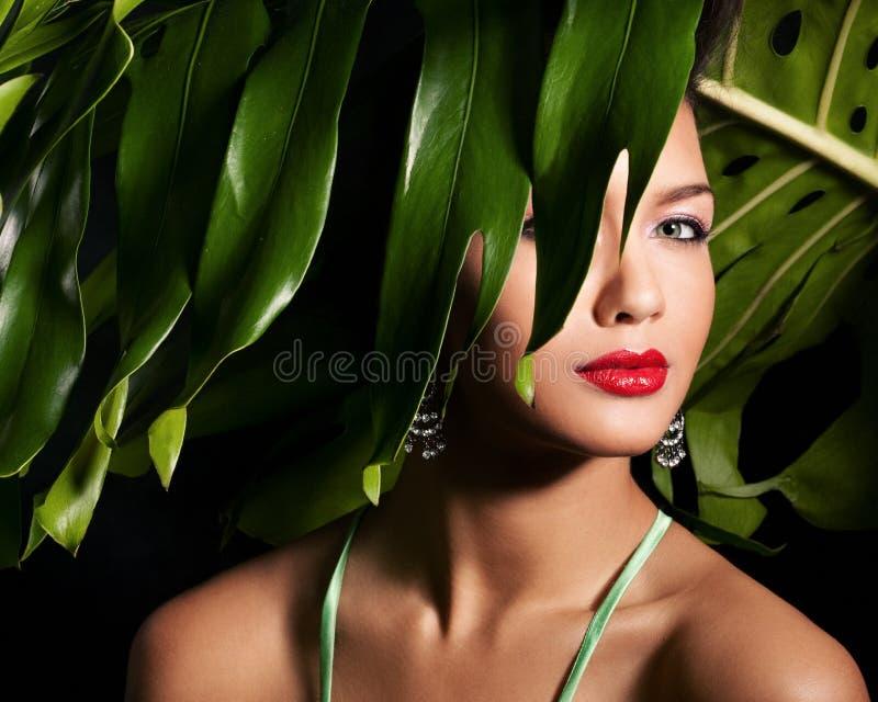 красотка тропическая стоковое изображение