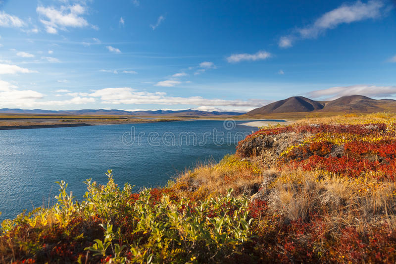 Красочная арктика Amguema тундры и реки осени стоковое фото
