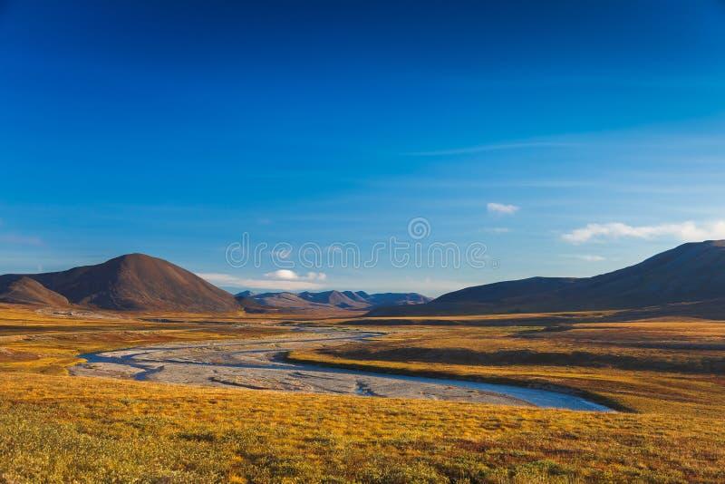 Красочная арктика Amguema тундры и реки осени стоковые изображения