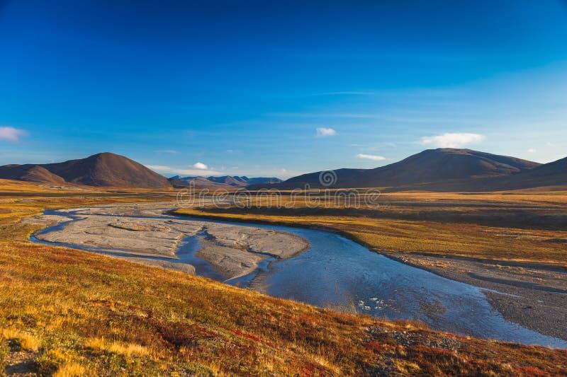 Красочная арктика Amguema тундры и реки осени стоковые изображения rf