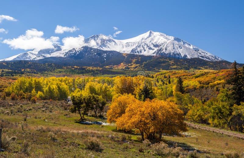 Красочная гора Колорадо в осени стоковое фото rf
