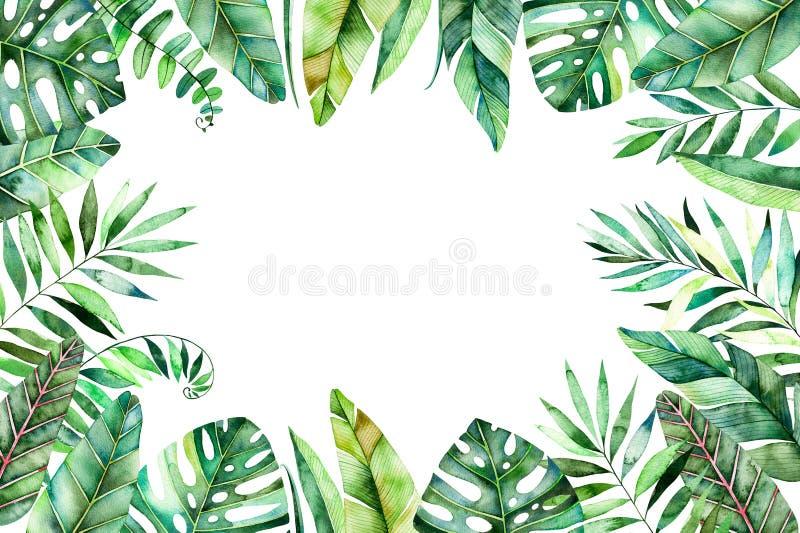 Красочная граница рамки акварели с красочными тропическими листьями иллюстрация штока