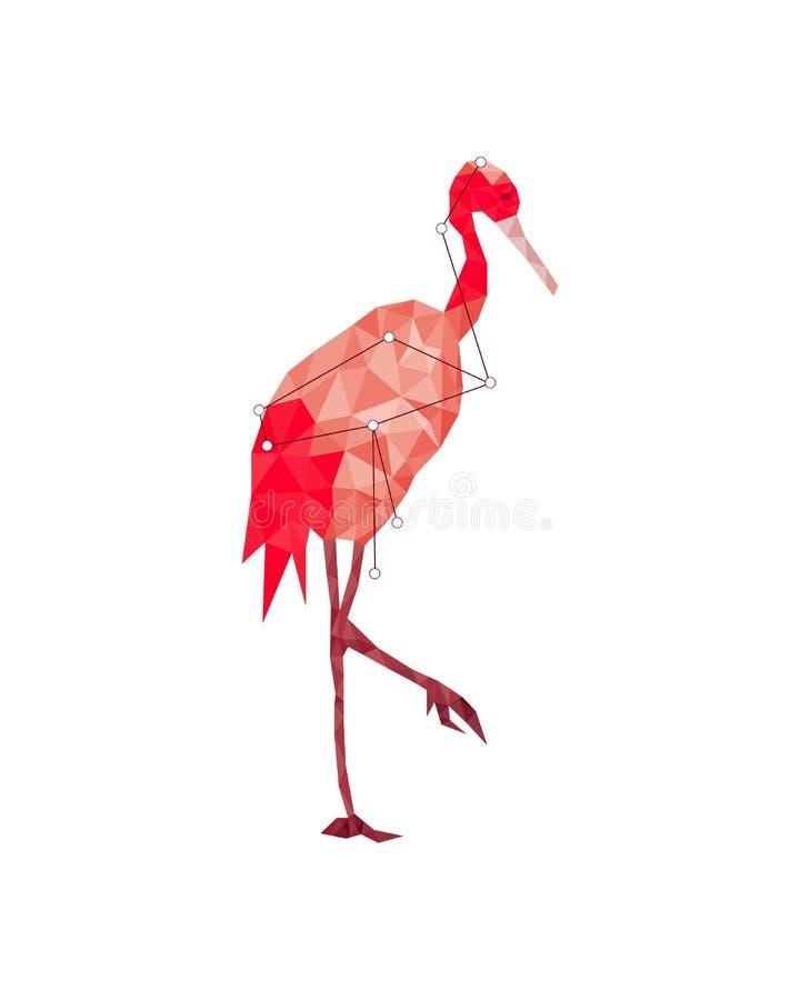 Красочная диаграмма искусство красной цапли в lowpoly стиле на белой предпосылке иллюстрация вектора