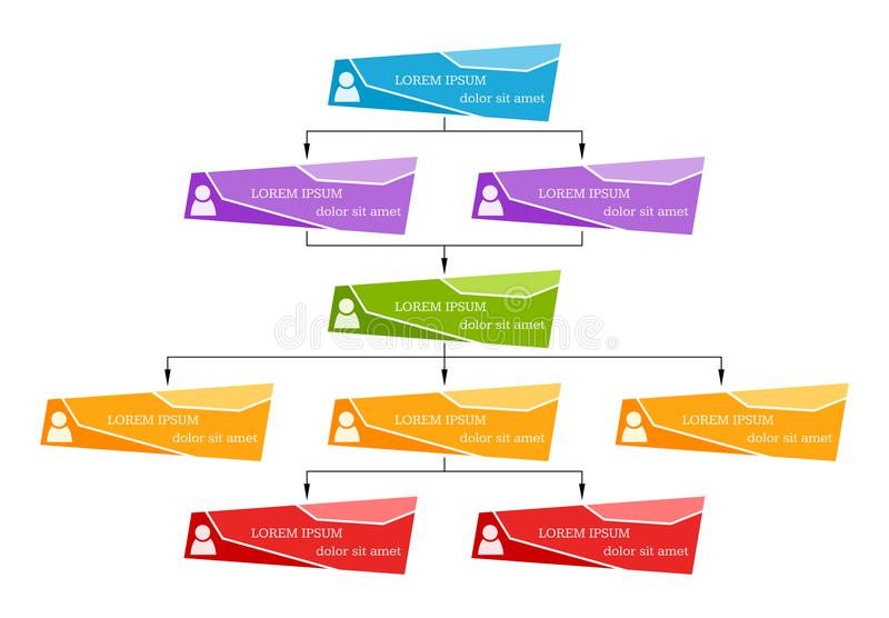 Красочная концепция структуры дела, корпоративная схема организационной схемы иллюстрация вектора