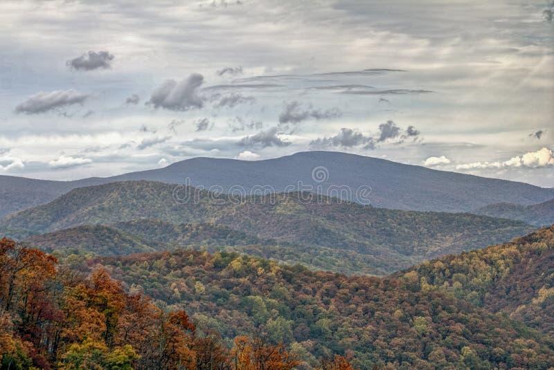Красочная листва осени в Rolling Hills стоковое изображение rf