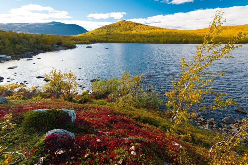 Красочная осень в Скандинавии стоковые изображения
