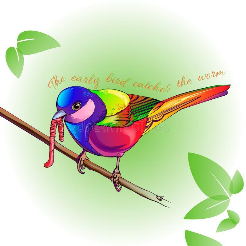 Красочная птица с червем бесплатная иллюстрация