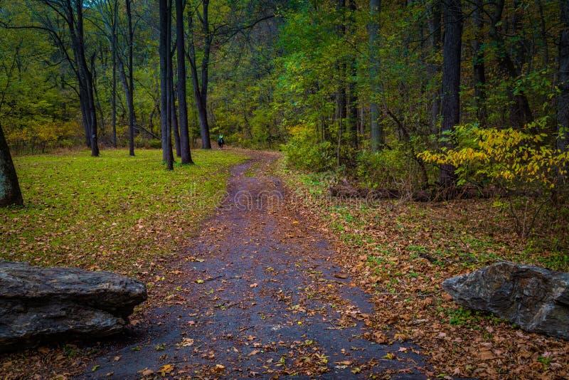 Красочная тропа в осени в Lancaster County стоковые изображения rf