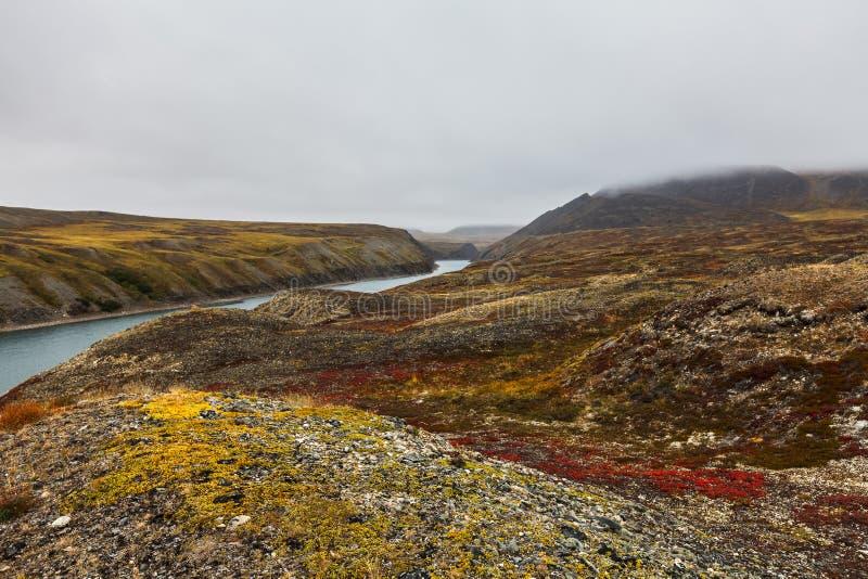 Красочная тундра в арктике Amguema тумана и реки стоковое изображение