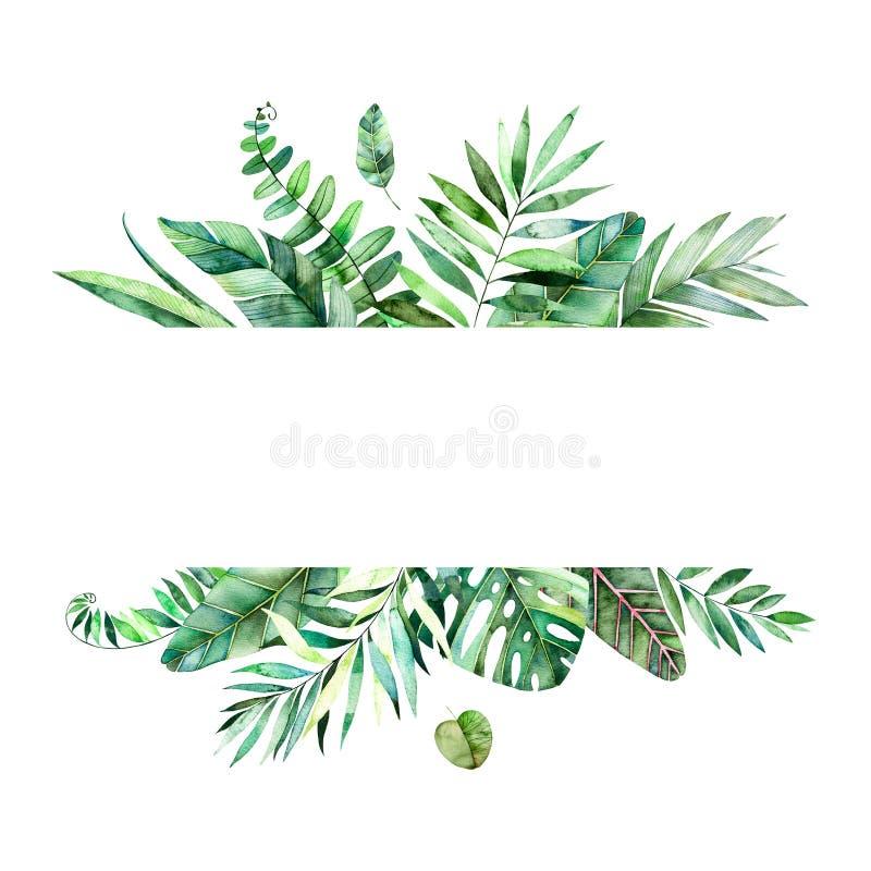 Красочная флористическая рамка с красочными тропическими листьями иллюстрация штока