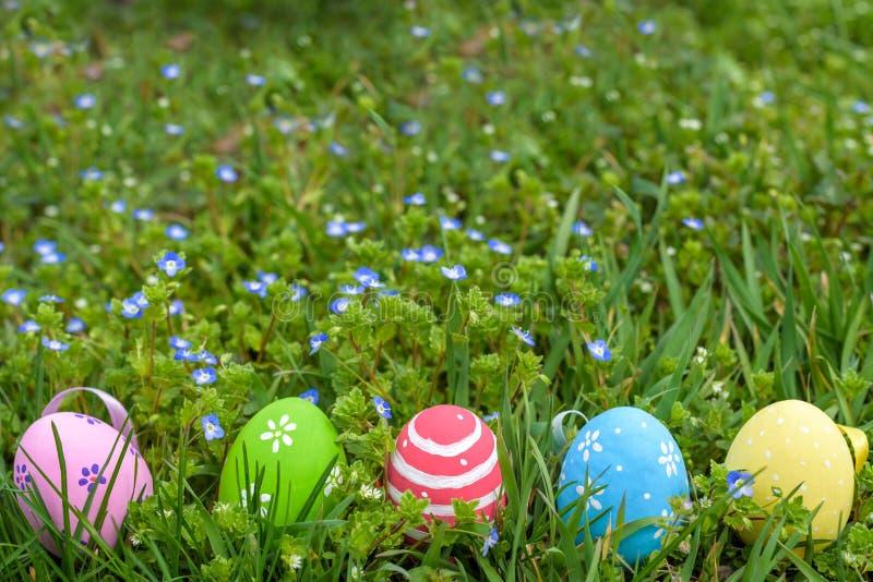 красочное пасхальное яйцо в свежем луге весны стоковое изображение rf