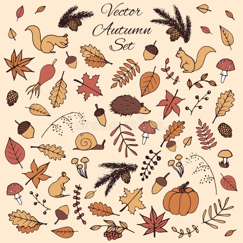 Красочной комплект нарисованный рукой элементов осени вектора с листьями и животными иллюстрация штока