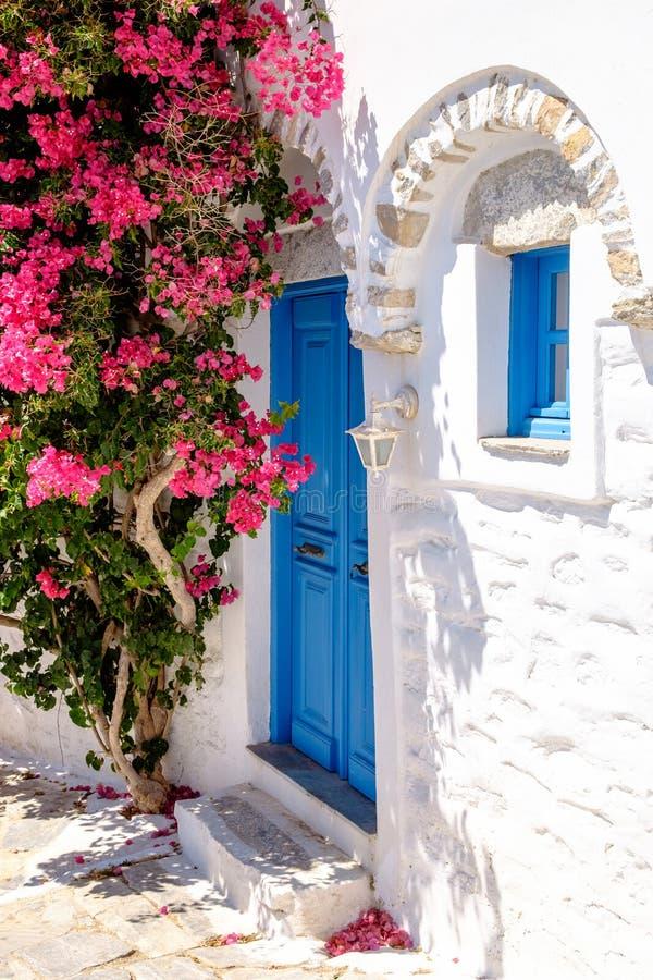 Красочные двери и цветки в белой среднеземноморской улице, Amorgo стоковое фото