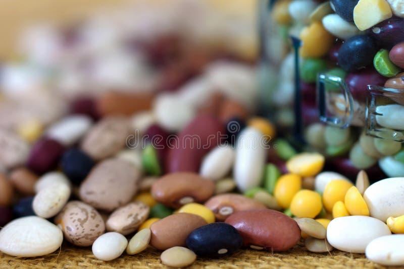 Красочные высушенные фасоли для супа стоковое фото rf