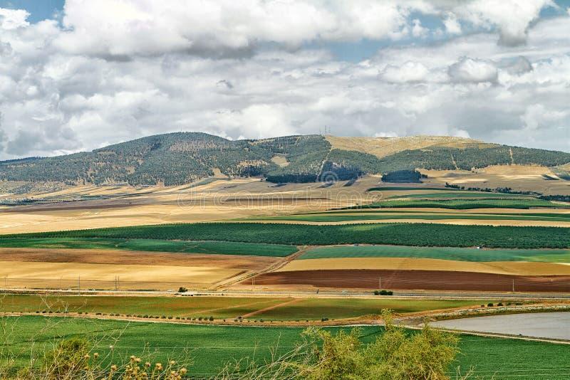 Красочные Голанские высоты стоковые изображения rf