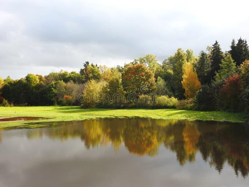 Красочные деревья осени и луг потока, Литва стоковое изображение