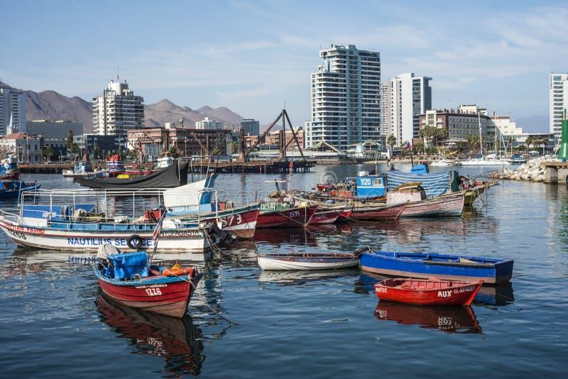 Красочные деревянные рыбацкие лодки в гавани на Антофагасте стоковые фотографии rf